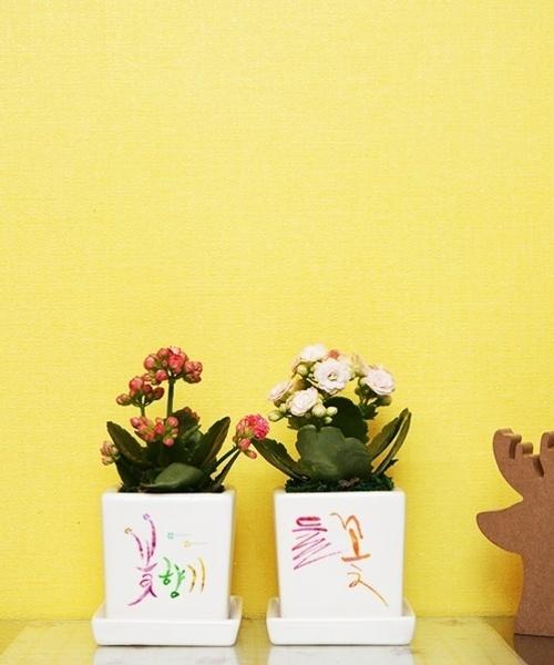 들꽃 & 꽃향기 2종세트
