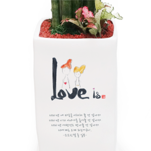 [Ķ��ȭ��-Love is...] + �����μ� <br><font color=hotpink><��ñ��> 3õ������ + 5%��!!<br>