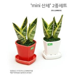 'mini�꼼' 2����Ʈ<br><font color=hotpink>�Ϳ��� �̴ϻ꼼������